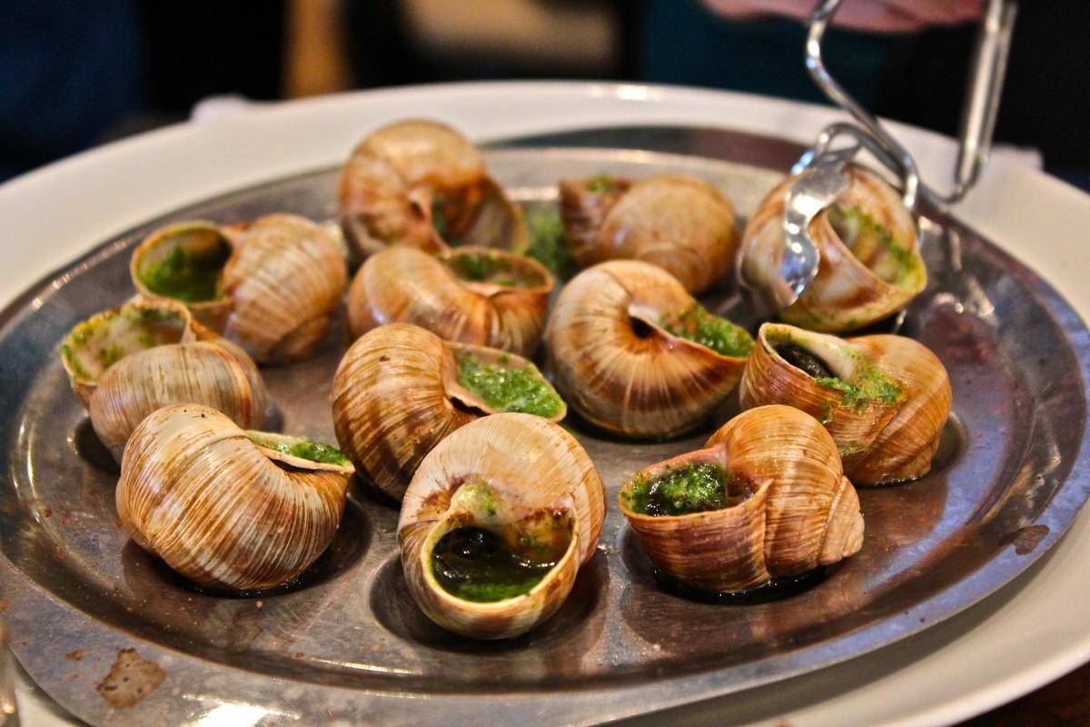 فرانسه Escargots de Bourgogne