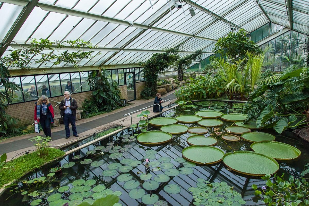 باغ گیاه شناسی و باغ وحش آمستردام