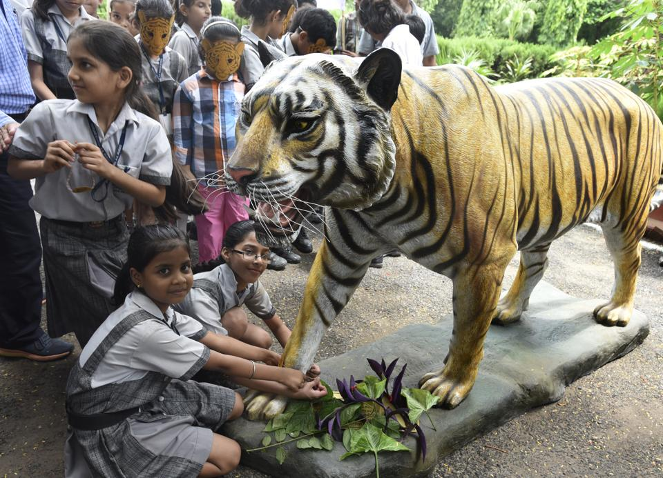 Observe The Animals At The Delhi Zoo