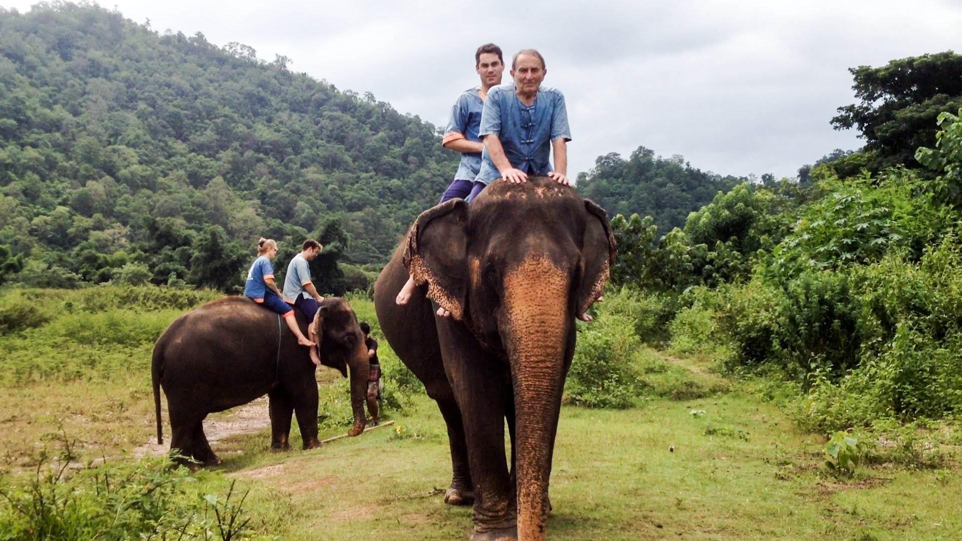 فیل سواری