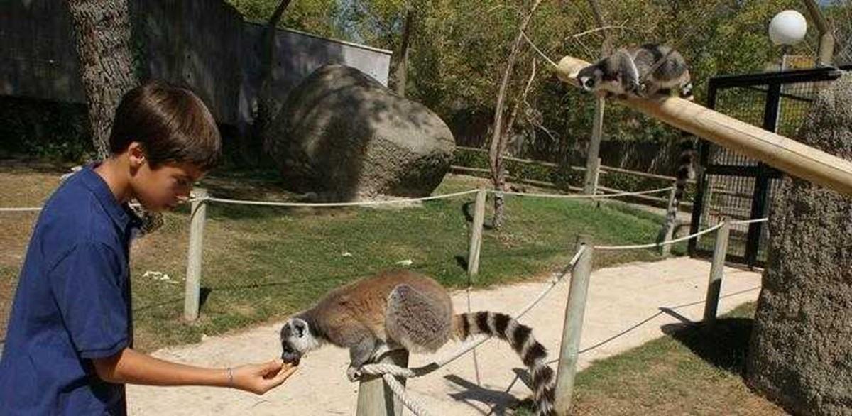 آکواریوم و باغ وحش مادرید