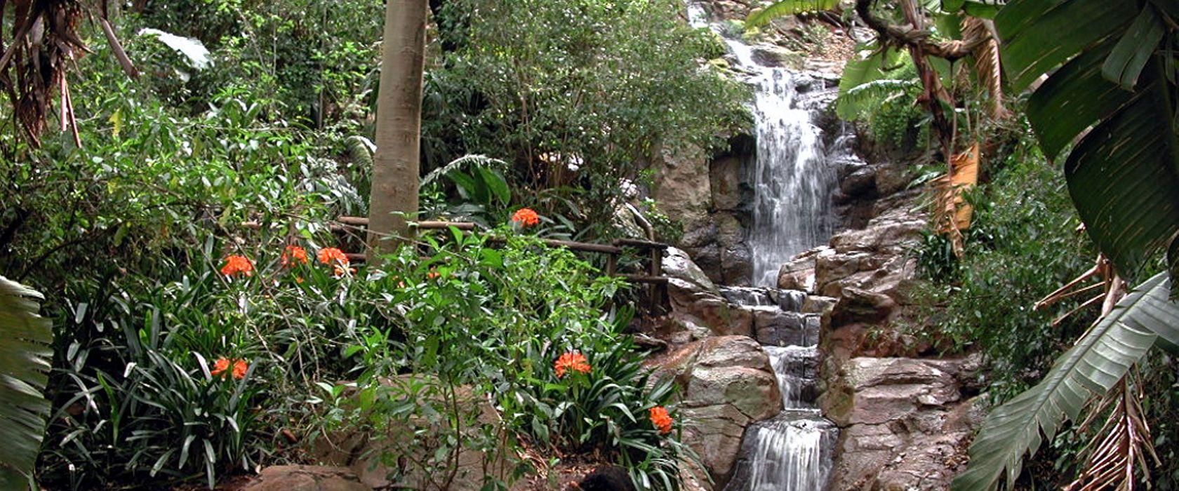 باغ ملی گل پرتوریا
