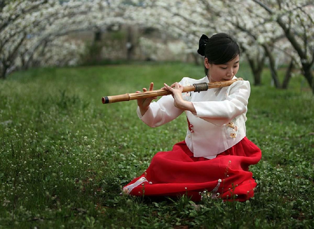 فلوت سنتی کره ای