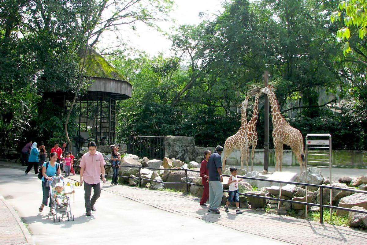 National Zoo Kuala Lumpur