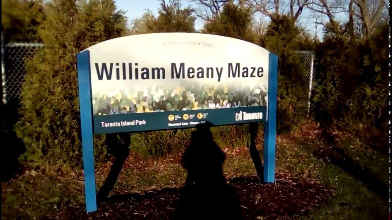 در هزارتوی ویلیام مینی