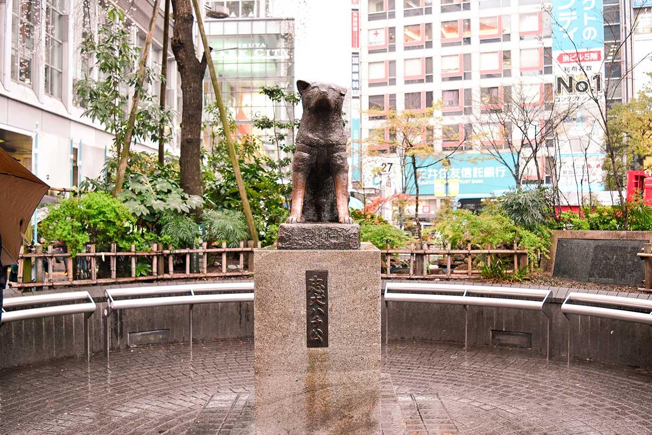 مجسمه ی هاچیکو