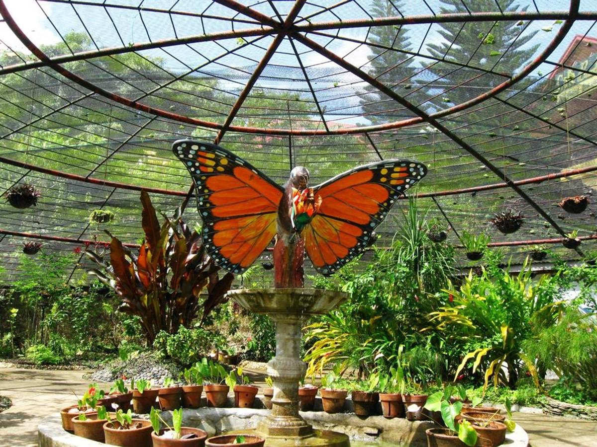 باغ پروانه های ویکتوریا