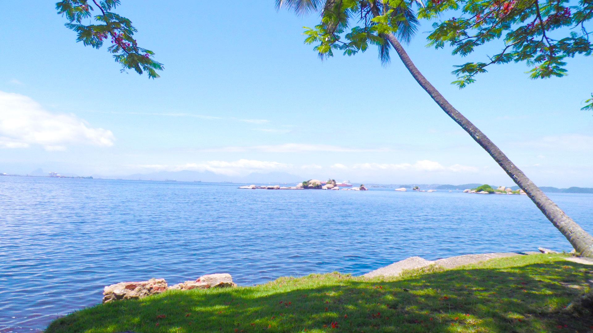 جزیره ی پاکوئتا جزیره ی پاکوئتا