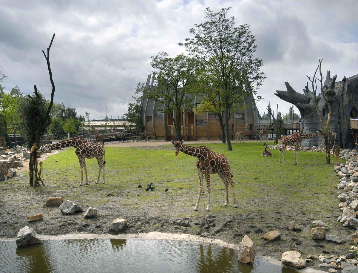 باغ وحش بلیج دورپ