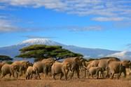 klimanjaro mount tansania